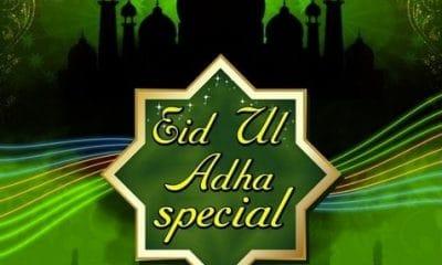 Eid ul Adha 2020 Whatsapp Status Video Download