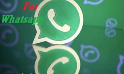 Status Video For Whatsapp Download