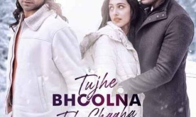Tujhe Bhoolna Toh Chaaha Song Jubin Nautiyal Status Video Download