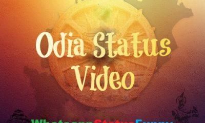 Odia Short Status Video Download