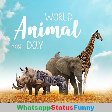 World Animal Day Whatsapp Status Video Download